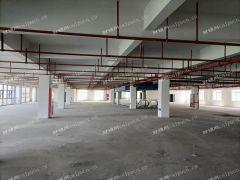城东旺铺招商,足浴等娱乐行业,总面积3000平